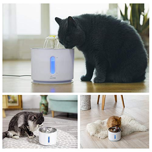 Cat Water Fountain Stainless Steel, 81oz/2.4L, Intelligent Pump with LED Indicator for Water Shortage Alert, Water Level Window