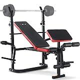 ISE Banc de Musculation Multifonction Réglable Pliable Inclinable Fitness pour Entrainement Complet SY-5430B