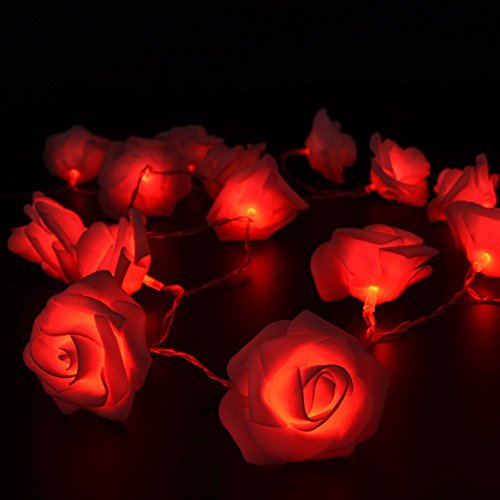 Fairy String Lights Red Rose Flower 20 LED Battery Operated Decorative...