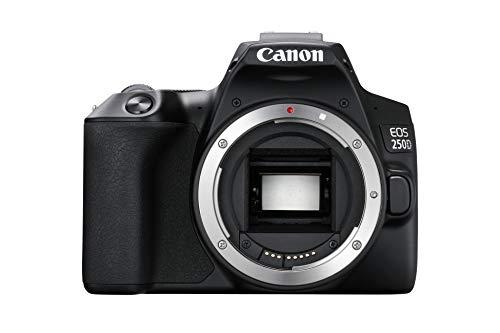 Canon EOS 250D - Cámara Digital (24,1 MP, 6000 x 4000 Pixeles, CMOS, 4K Ultra HD, Pantalla táctil) Negro