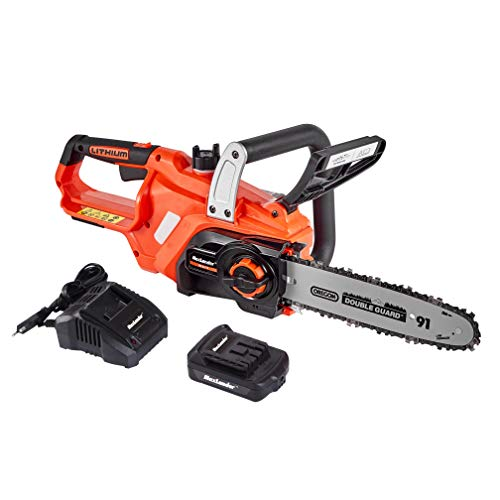 MAXLANDER Cordless Chainsaw, 20V Battery Powered Chain Saw With 2.0Ah Battery and Fast Charger, 10 Inch Chain and Bar Included Lightweight Easy Clean (#1)