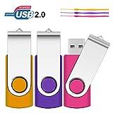 1Go Clé USB, SRVR Lot de 3 Memory Stick Clé USB Multicolore Mémoire Memory Stick Stockage de données USB 2.0 avec Capuchon Voyant Del