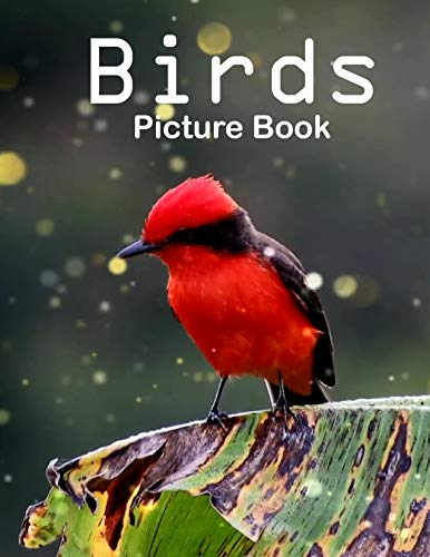 Birds Photography Photo Book: A picture book Gift for Human...