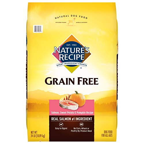 Nature's Recipe Grain Free Dry Dog Food, Salmon, Sweet Potato & Pumpkin Recipe, 24 Pound Bag, Easy to Digest