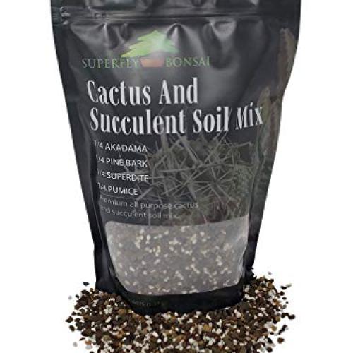 Succulent & Cactus Soil Mix