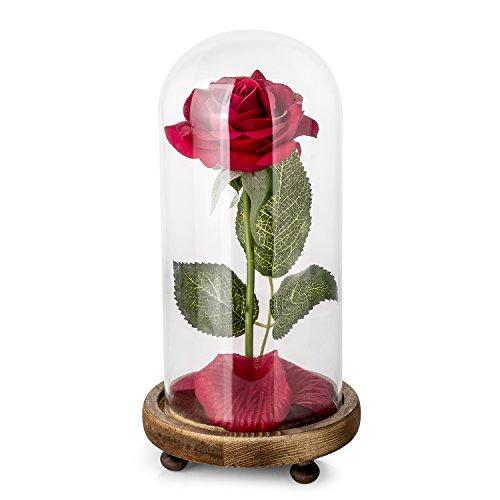 Kit di Rose La Bella e la Bestia, Rosa Rossa di Seta e Luce a LED con Petali caduti in Cupola di Vetro su Base in Legno Anniversario di Matrimonio Festa della Mamma