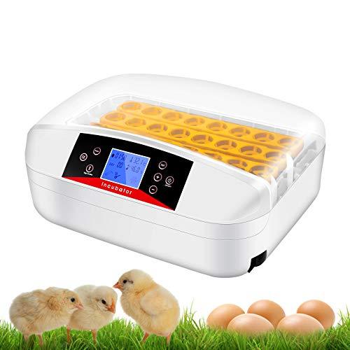 Digital Clear Egg Incubator with Automatic Egg...