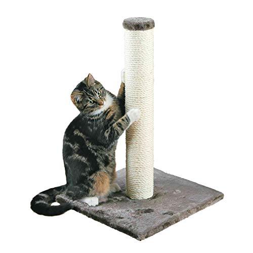 TRIXIE Poste Rascador Para Gatos - Arbol Para Gatos Sisal Natural...