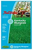 Barenbrug USA TVKBG7 TV 7 lb Kentucky Bluegrass Seed