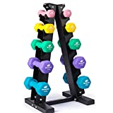 Fitness Alley Neoprene Dumbbells A Frame Rack - Free Weights Hex Hand Weights - Gym Exercise 5 Pairs Set (2lb, 4lb, 6lb, 8lb & 10lb) with 5 Tier Rack