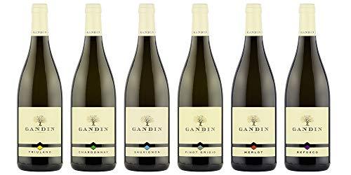 Selezione (Chardonnay, Sauvignon, Pinot Grigio, Friulano, Merlot, Refosco) DOC Friuli Isonzo  Gandin Wines  6 Bottiglie da 750 ml