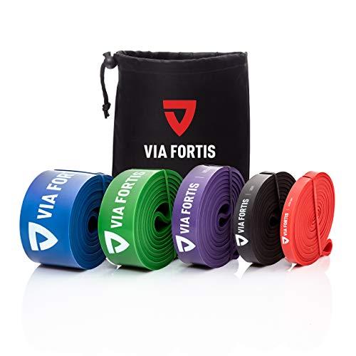 VIA FORTIS Bande Elastiche di Resistenza [con Borsa e Guida Esercizi] Bande Elastici Fitness,...