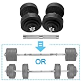 papababe Adjustable Dumbbells Cast Iron with Connector 40 50 65 105 200, Adjustable Dumbbell Sets, Lifting Dumbells. (100, Pair)