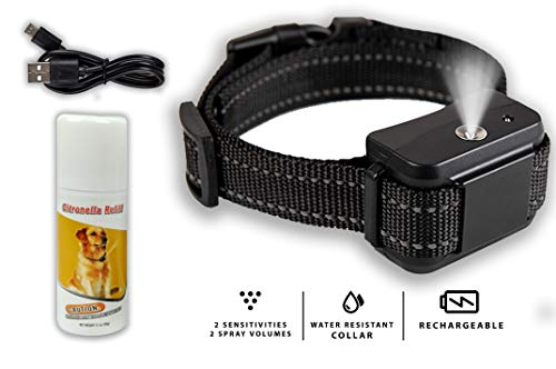 Downtown Pet Supply Rechargeable Citronella Anti-Bark No Shock Safe & Humane No Barking Water Resistant Dog Training Collar for Small, Medium, and Large Pets (Collar & Citronella)