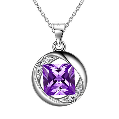Febuary Birthstone Necklace for Women 925 Sterling Silver Birthday Round Pendant Necklace Girl Party Jewellery Gift FP0143F (Jewellery)