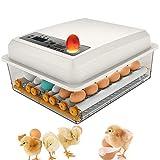 Incubateur Oeufs Couveuses Automatique 16 œufs Retournement...