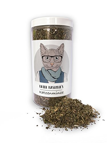 La Erba gatta (Catnip) Fa Felice Il Vostro Gatto! 60 g Confezione XXL. qualità Premium: Solo la Menta Migliore per Il Vostro Piccolo Tesoro (Tagliata e seccata).