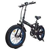 ECOTRIC Powerful Bike Foldable Fat Tire EBike 13Ah/48V Li-ion Battery 500W Motor 20' x4.0 inch Fat Tire Aluminum Frame Electric Mountain Beach Snow Electric Bicycle Ebike
