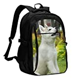 Mochila de Viaje para computadora portátil, Cute Little Husky Travel Laptop Backpack College School Bag Mochila Informal con Puerto de Carga USB