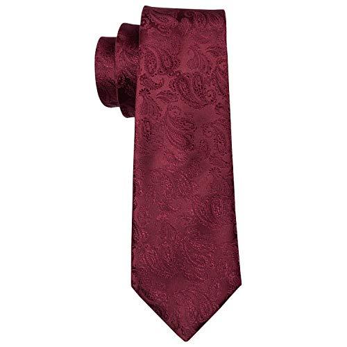 Barry.Wang Men Ties Paisley Woven Silk Necktie Set with Pocket Suqare Cufflinks Formal