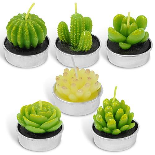 LA BELLEFÉE Tealight Candles, Cactus Terrarium Candle Delicate...