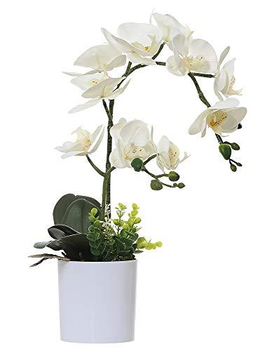 Olrla Blanca phalaenopsis Artificial orquídea Bonsai con ce