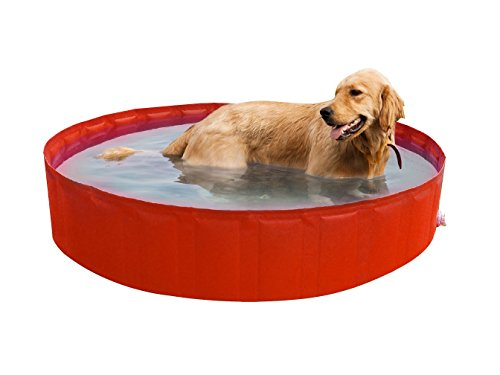 New Plast My Dog Pool 220 cm Piscina per Cani, Arancione, 35.5x15x5.5 cm