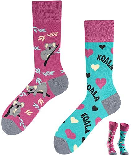 TODO COLOURS Calzini fantasia - Koala - Calze divertenti - orsacchiotto, bradipo, albero, foresta, cuori (43-46, Koala)