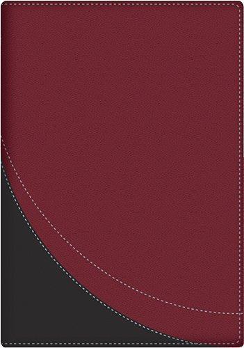 La Biblia en Orden Cronologico-Rvr 1960