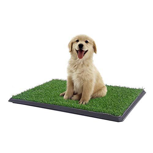 Sonnyridge Easy Dog Potty Training - Made with...