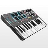Controlador de Teclado MIDI DMK25, Donner Professional Sintetizador de 25 Teclas Mini USB Beat Pad...