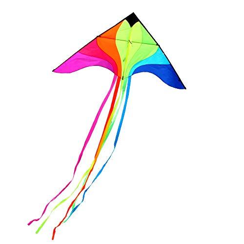 Aquiloni Caixia, Coda Lunga colorato Kite Arcobaleno Arcobaleno, Mulinello per Bambini Adulti brezza Facile da Volare Grandi (Dimensioni : 700m Line)