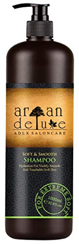 Argan Deluxe Repair & Care-Shampoo in Friseur-Qualität 1000 ml - gegen Spliss,...