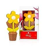 Fleur en chocolat- Marguerite jaune   Cadeau d?anniversaire   Enfant   Adulte   Homme   Femme   à offrir   Garçon   Fille   Fête des mères   Fête des grands-mères