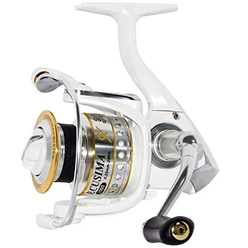 Ryobi - Mulinello da pesca a spinning, mulinello a tutto tondo  Ecusima GX 2000