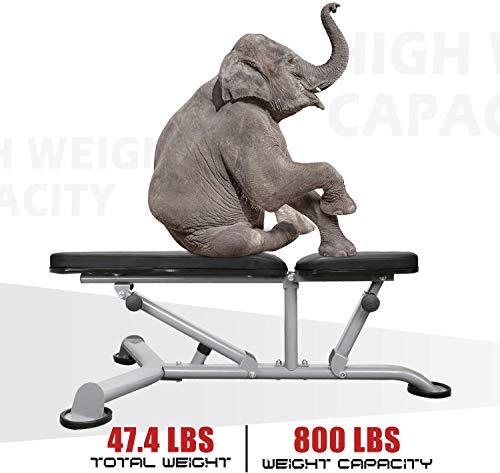41sunmDnGXL - Home Fitness Guru