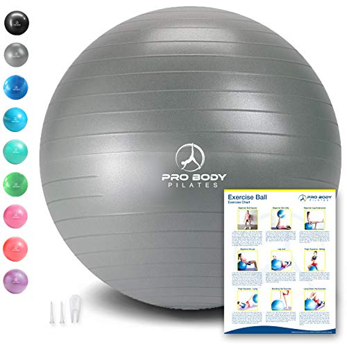 ProBody Pilates Exercise Ball - Professional Grade Anti-Burst Fitness, Balance Ball for Yoga, Birthing, Stability Gym Workout Training and Physical Therapy - Work Out Guide (Silver (No Pump), 65 cm)