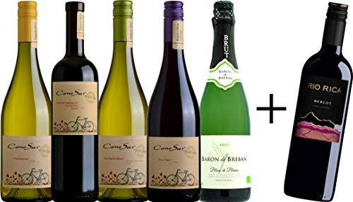 コノスル 人気のオーガニック赤白ワイン(赤2本,白2本)とスパークリング オーガニック白ワイン1本+赤ワイ...