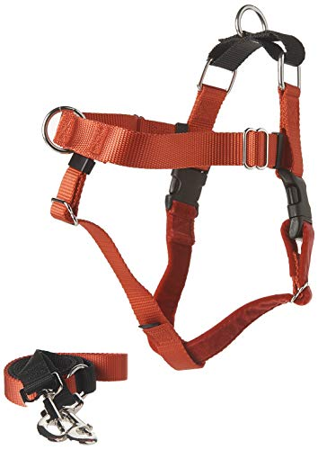 2 Hounds Design Freedom No-Pull Dog Harness with...