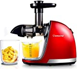 AMZCHEF Slow Juicer,Professional Cold Press Juicer Extractor Machine,Quiet Motor, Reverse Function, Slow Masticating Juicer with Brush, For fruit & Vegetable Juice