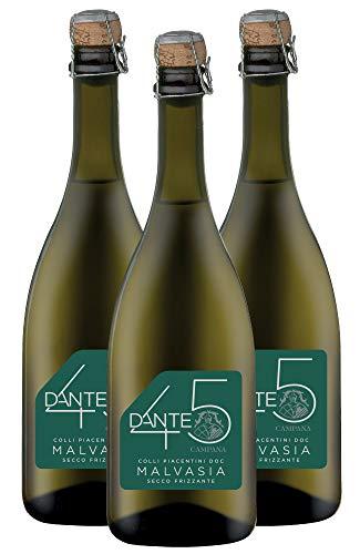 Malvasia Colli Piacentini Doc Secco Frizzante Dante 45 - confezione da 3 bottiglie