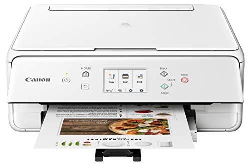 Canon 2986C022 PIXMA TS6220 Wireless All in One Printer with Mobile Printing, White, Amazon Dash Replenishment Ready, One Size, White