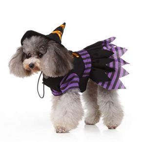 POPETPOP Disfraz de Bruja de Perro: Disfraces de Halloween para Perros pequeños Disfraz de Mascota Divertida Bruja…