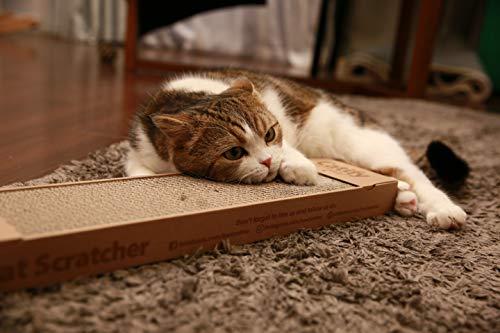 Best Pet Supplies, Inc. Catify, Inc, Inc, Cat Scratcher Pad with Catnip - Narrow (4 Pack)