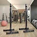 Barbell Rack Stand Squat Rack Cap Barbell Dumbell Rack Gym Bench Press Squat Bench Press Rack Dipping Station Dip Stand Fitness Bench Press Equipment Home Gym