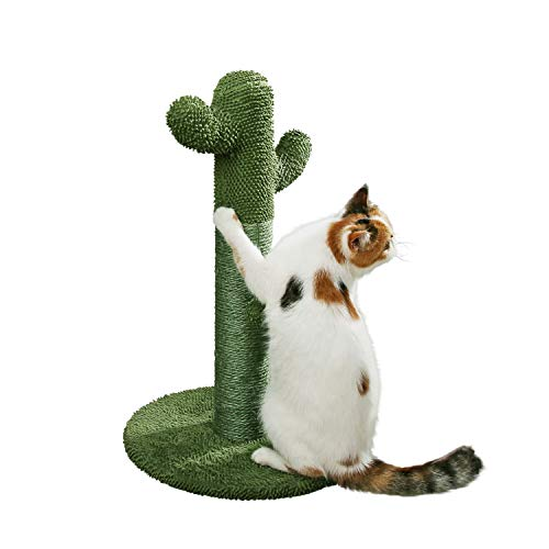 PetnPurr The Original Cactus Cat Scratching Post with Teaser Ball for All Ages - Protect Your Furniture with Natural Sisal Scratcher