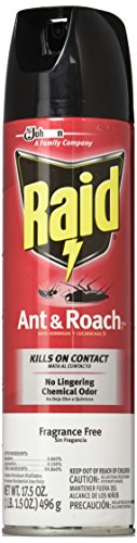 Raid Ant and Roach Killer, Fragrance Free, 17.5 OZ (Pack - 2)