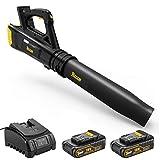 【Sélection Printemps】TECCPO Souffleur 18V, Sans Fil, 2 Batteries &...