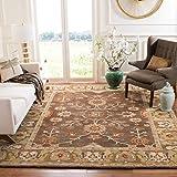 Safavieh Anatolia Collection AN562A Handmade Traditional Oriental Premium Wool Area Rug, 8' x 10', Brown / Gold