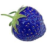 Rosepoem 100PCS Naturel Organique Bleu Fraise Antioxydant Graines Plante de plantes rares et jardin de bonsaï